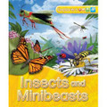 Explorers: Insects and Minibeasts (Hardcover)