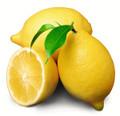 Lemon Jazz