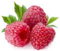Raspberry Garden White Tea