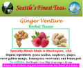 Ginger Venture SFT
