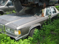 1989	MERCURY	GRAND MARQUIS	00915