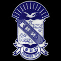"Sigma Chenille Shield Emblem - 10 1/2""T"