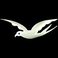 "Sigma Dove Emblem - 9  5/8""W"