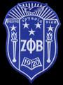 "Zeta Shield -10 1/2"""