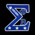 "Sigma SWAG Emblem - 2 7/8"""
