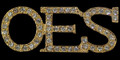 OES Crystal Lapel Pin - Gold