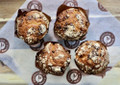 Davidovich Chocolate Chip Muffins 5oz - DM11701