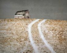 Weathered White Barn on Light Snowy Path, Benton Co. IA