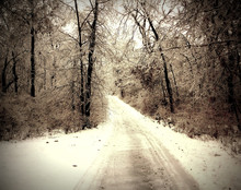 Icy Trail, Homestead, IA