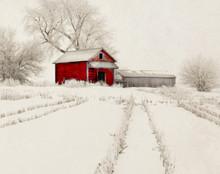 Red Barn in Snowy Cornfield, Walford, IA