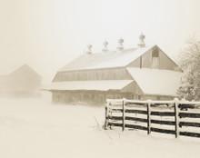East Amana Barns on Snowy Morning, East Amana, IA