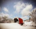 Covered Bridge on Snowy Morn, Winterset, IA