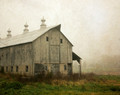 Middle Barn in Morning Fog
