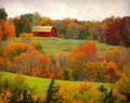 Red Barn in Autumn Foliage, near Stone City, IA