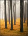 Walnut Grove #3 (Vertical), Amana, IA