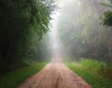 Green Trail, Rural Johnson Co., IA