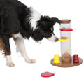 Dog Activity Gambling Tower (Level 1)