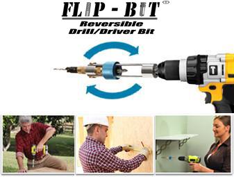 flip-bit-action-pic.jpg