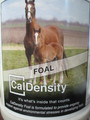 Caldensity Foal