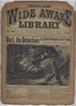 1893 FIVE CENT WIDE AWAKE LIBRARY 1188 ADVENTURE STORY DIME NOVEL STORY PAPER