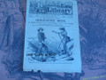 1882 BEADLE'S HALF DIME LIBRARY #232 CALAMITY JANE STORY DIME NOVEL STORY PAPER