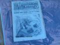 1884 BEADLE'S HALF DIME LIBRARY #347 DEADWOOD DICK STORY DIME NOVEL STORY PAPER