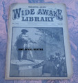 FIVE CENT WIDE AWAKE LIBRARY #1206 DIME NOVEL STORY PAPER