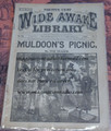 1890 FIVE CENT WIDE AWAKE LIBRARY #983 COMIC STORY DIME NOVEL STORY PAPER