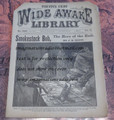 FIVE CENT WIDE AWAKE LIBRARY #1290 DIME NOVEL STORY PAPER