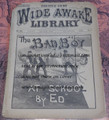 1889 FIVE CENT WIDE AWAKE LIBRARY #924 DIME NOVEL STORY PAPER