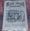 1869 FIVE CENT WIDE AWAKE LIBRARY #169 DIME NOVEL STORY PAPER