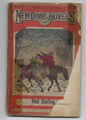 1866 BEADLE'S NEW DIME NOVELS #146 DIME NOVEL STORY PAPER