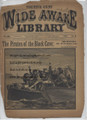 1890 FIVE CENT WIDE AWAKE LIBRARY 1000 PIRATE STORY DIME NOVEL STORY PAPER