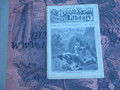 BEADLE'S POCKET LIBRARY #169  DIME NOVEL