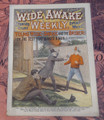 WIDE AWAKE WEEKLY #117 SCARCE FIREMAN FIRE FIGHTING DIME NOVEL STORY PAPER