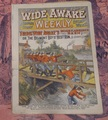 WIDE AWAKE WEEKLY #55 SCARCE FIREMAN FIRE FIGHTING DIME NOVEL STORY PAPER