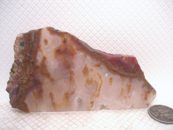 Smuggler's Cove Moss Agate*