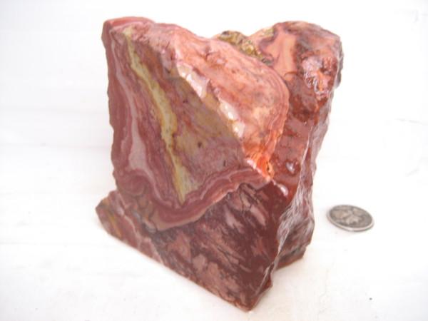 Nevada Rhyolite Wonderstone