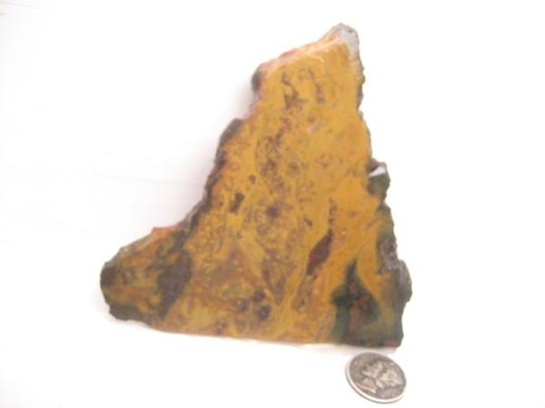 Metalic Stag Jasper'