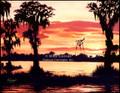 Marsh in Twilight