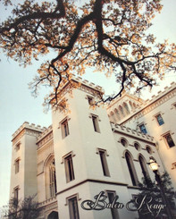 Baton Rouge Series ~ Old State Capitol