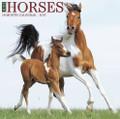 2017 Horses Calendar