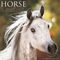2017 Horse: A Portrait Calendar