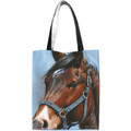 "Blaze Horse Canvas Tote  SKU # A11-1228D   Oil Cloth Canvas Tote constructed with double layered web handles, reinforced stitching, sturdy bottom insert.  Snap closure.  Organic pigments.  Rain Cote Finish.  12"" x 14"" x 5.5"""