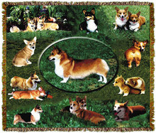 """Corgi Throw  SKU # A19-1401K   Sweet Corgis are beautifully displayed on this stunning throw.   100% cotton tapestry afghan.  Machine washable. Made in the USA.  2.5 lbs.  60""""L x 48""""W"""