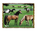 "Horse Friends Throw  SKU # A19-1401EM  Standing horses are beautifully displayed on this stunning throw.   100% cotton tapestry afghan.  Machine washable.  Made in the USA.  2.5 lbs.  60""L x 48""W"