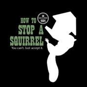 Backyard 101- Squirrel*