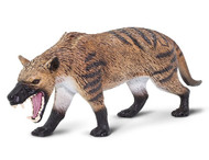 Hyaenodon gigas by Safari