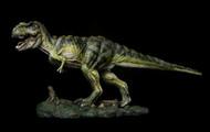 Tyrannosaurus by Itoy