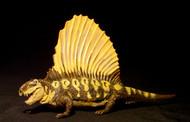 Dimetrodon by Carnegie
